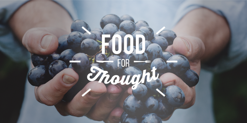 Food_for_thought_visual_identity-800x400